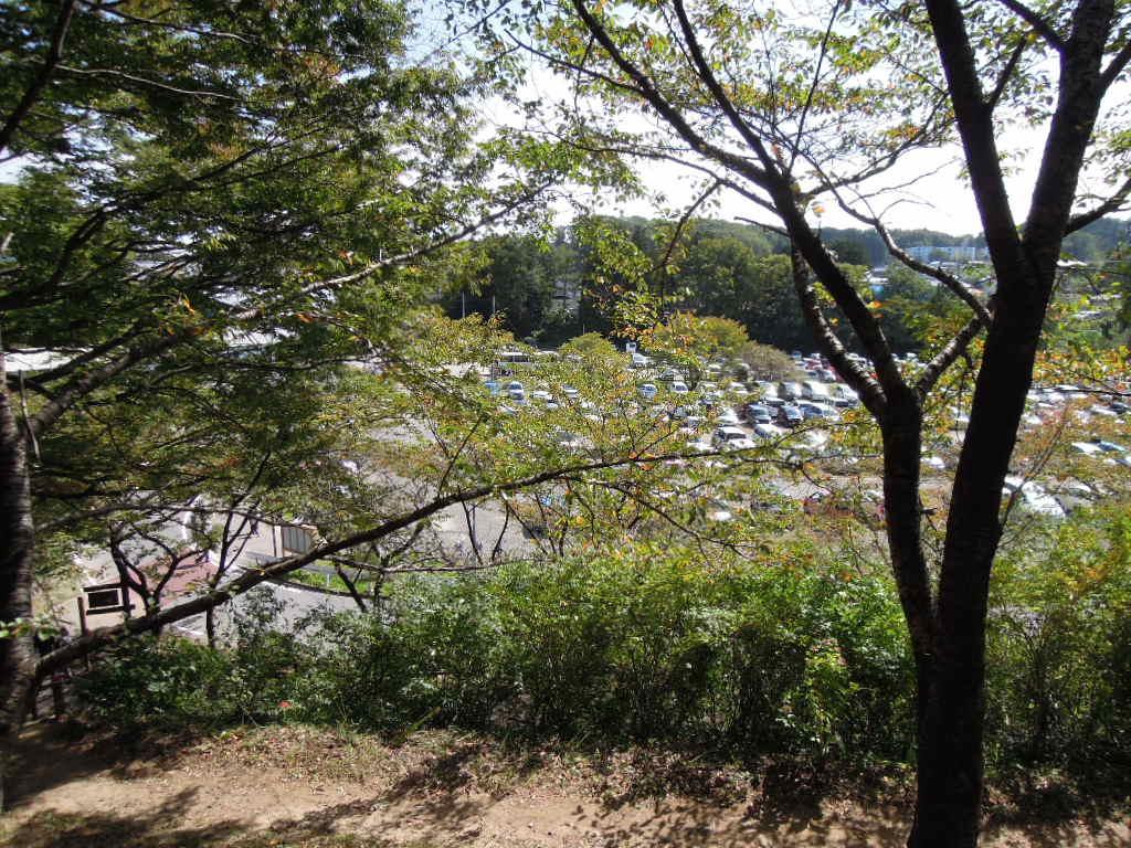船岡城址公園登り坂2